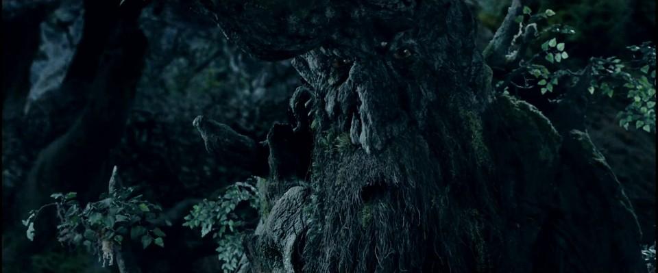 『ロード・オブ・ザ・リング』における木の鬚
